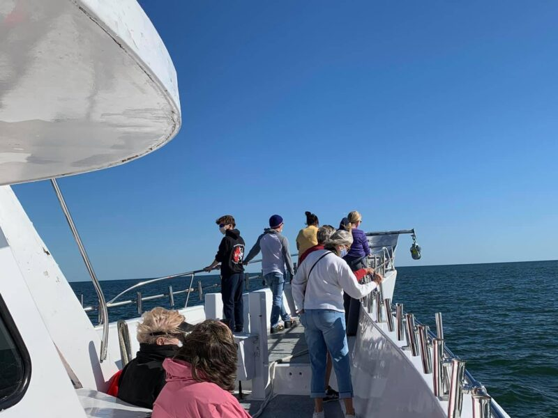 Everyone enjoyed the whale watching trip today, photo by one of our fans on the trip Anne Marie, nice pictures.