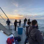 Jersey shore whale watch tour dates 2021