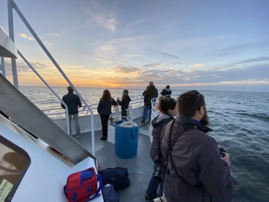 , Our Whale Watching Boats, Jersey Shore Whale Watch Tour 2021 Season